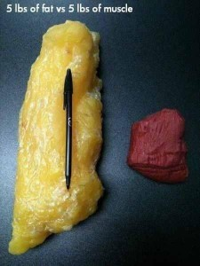 Yes the scale is important, but don't let that be your only focus.